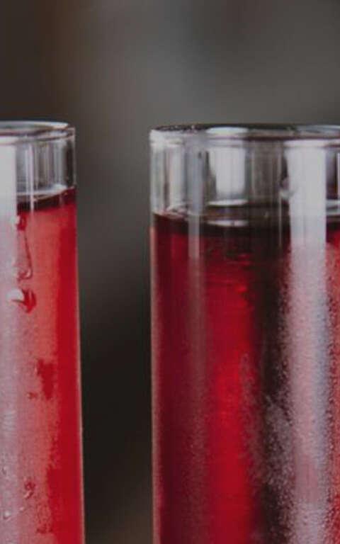 Wine Stability & Finishing